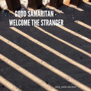border wall - welcome the stranger graphic