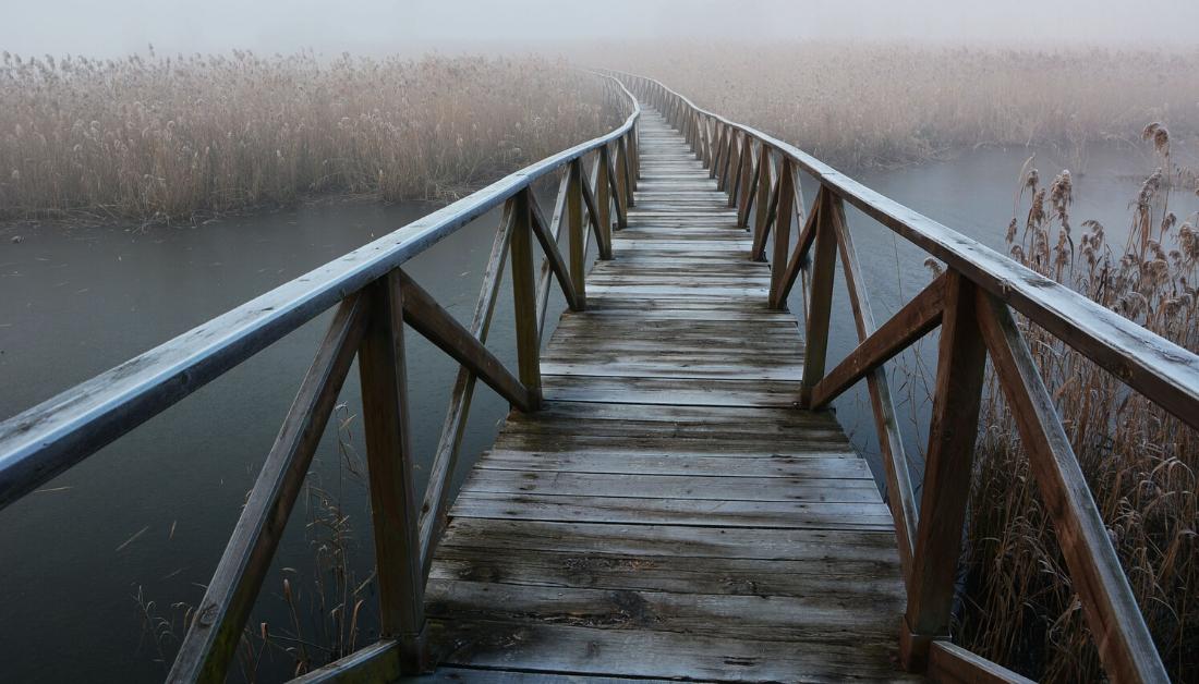 bridge into mist