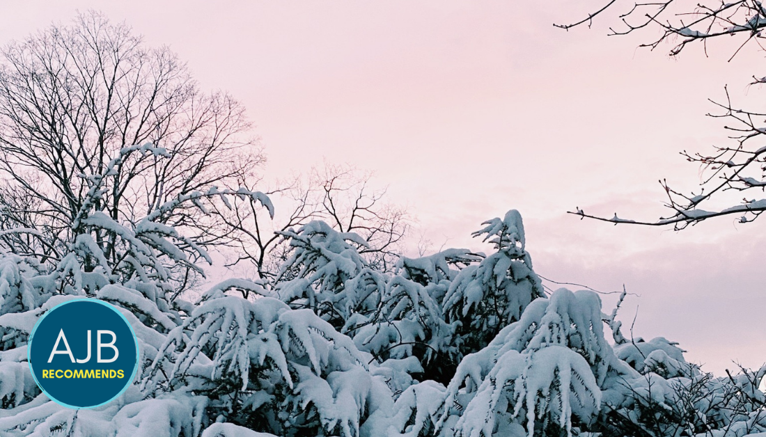 picture of pink sunset and snowy bushes with the AJB Recommends logo