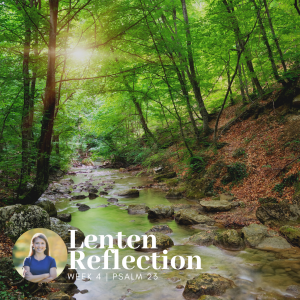graphic is a picture of a river surrounded by trees with the sun shining through and text overlay that says Lenten Reflection Week 4 Psalm 23 and also a picture of Amy Julia Becker in a circle frame