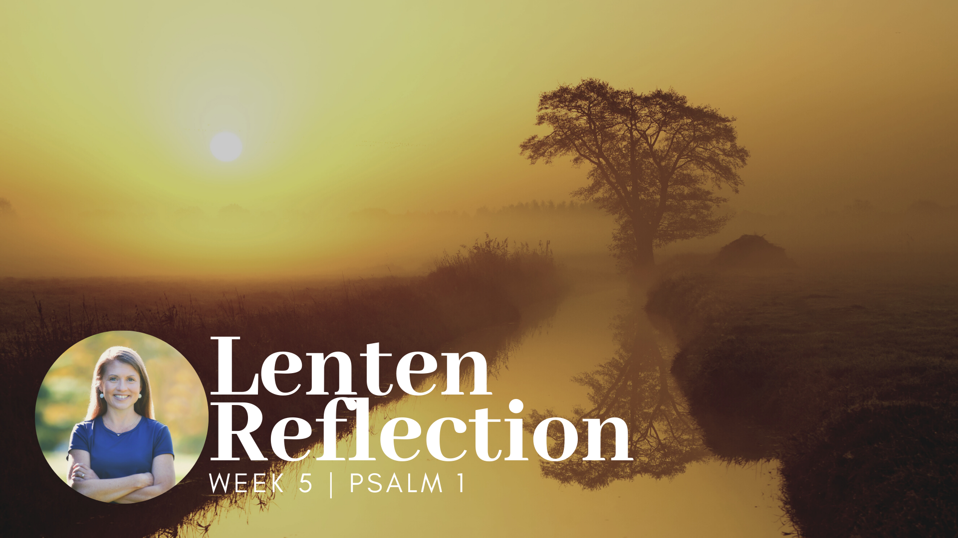 text overlay that says Lenten Reflection Psalm 1 over a picture of a sunset with a tree by a stream of water