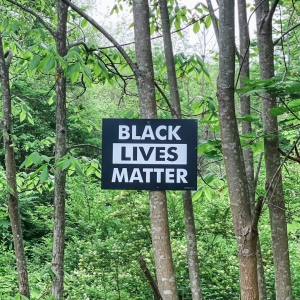 sign in a forest nailed to a tree that says Black Lives Matter