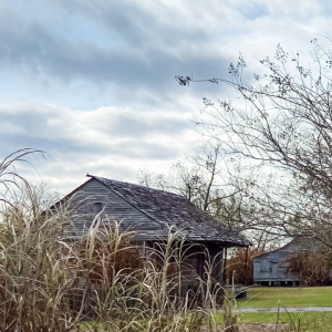 picture of an old cabin at the Whitney Plantation with a dark sky in the background and tall grasses partially obscuring the cabin
