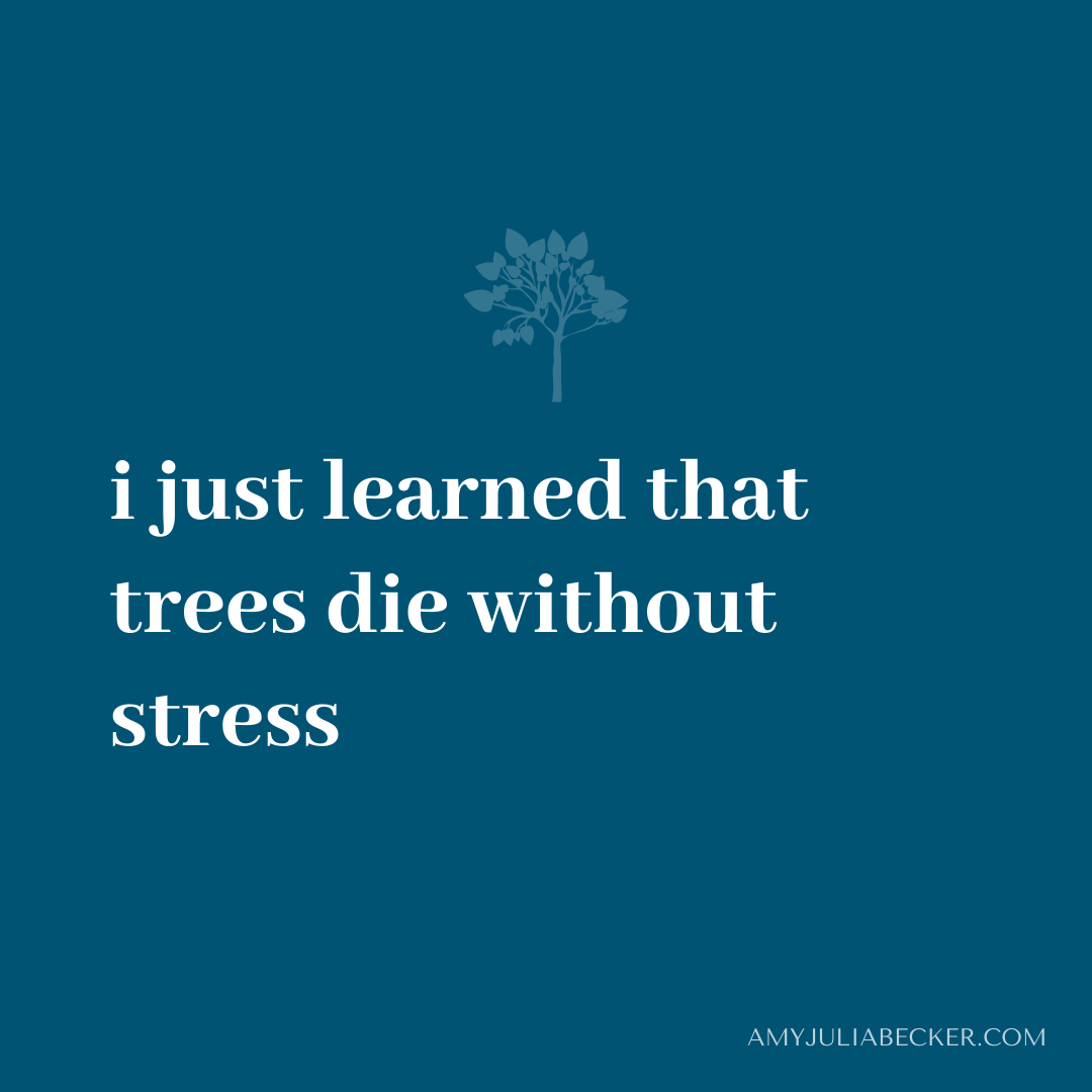 Read more about the article Like Trees, We Need Stress in Our Lives