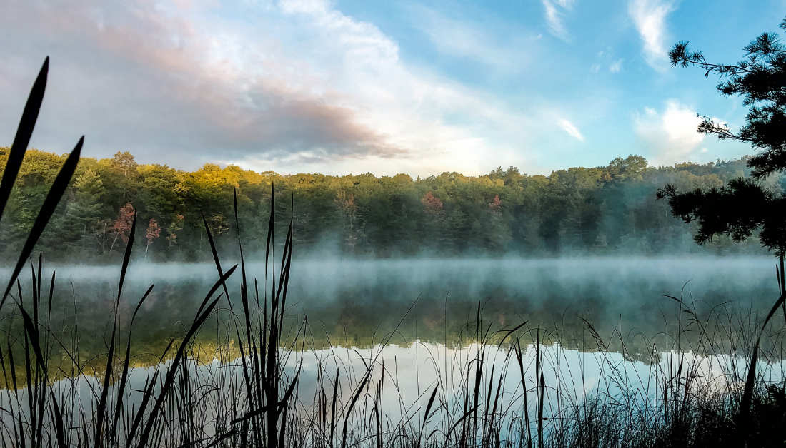 mist rising off of a lake with grasses in the foreground and autumn trees and a morning sky in the background