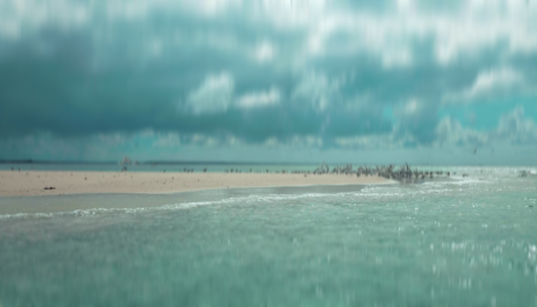 liquified effect over picture of dark sky and ocean with birds flying up